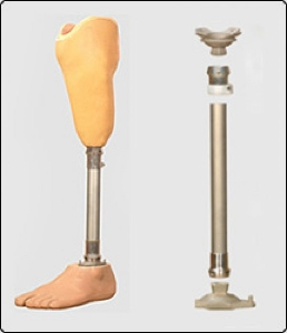 Artificial Limb (Below Knee Prosthetic Components)